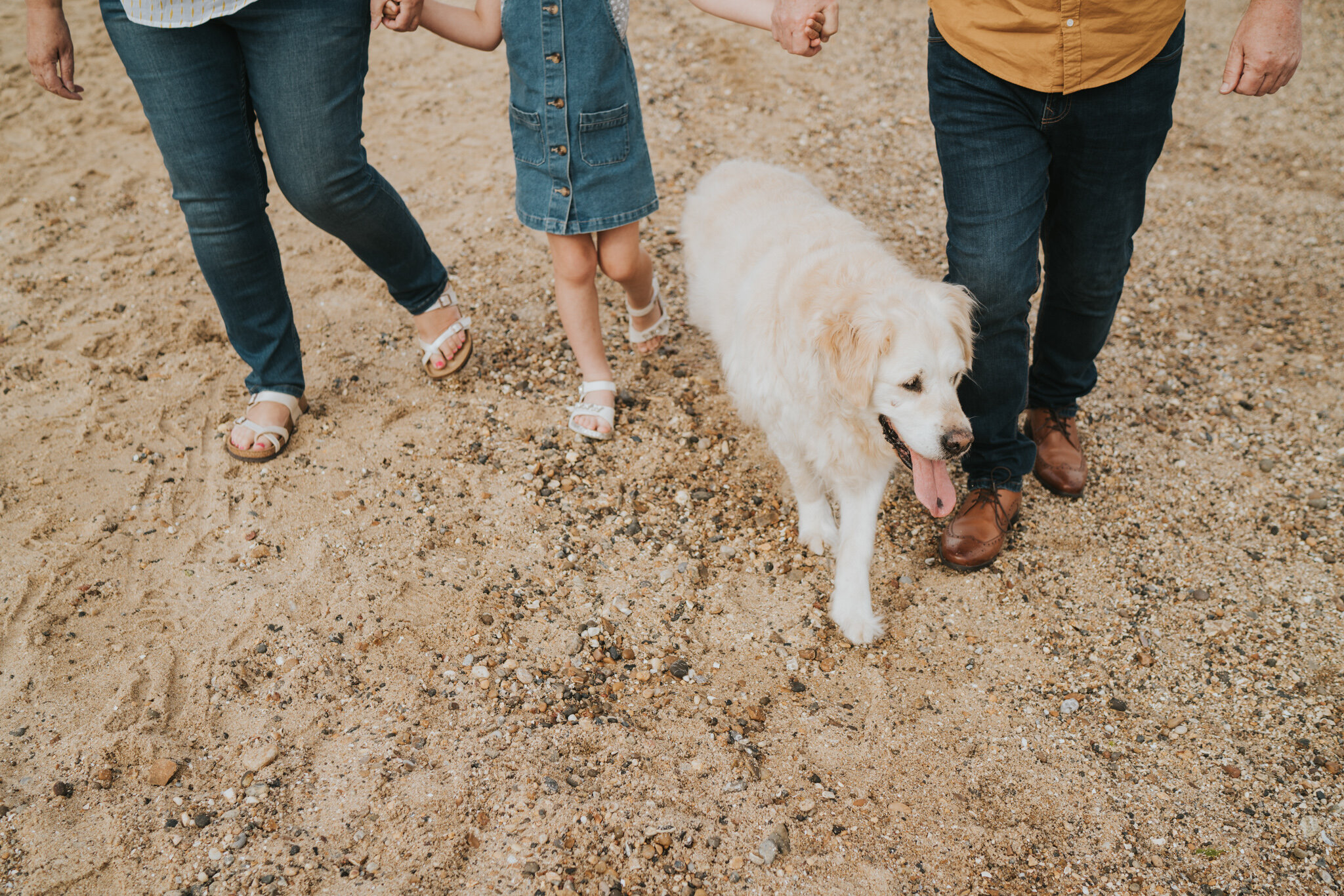 celebratory-beach-family-session-thomson-family-cudmore-grove-east-mersea-grace-elizabeth-colchester-essex-devon-suffolk-and-norfolk-alternative-wedding-and-family-photographer (6 of 53).jpg