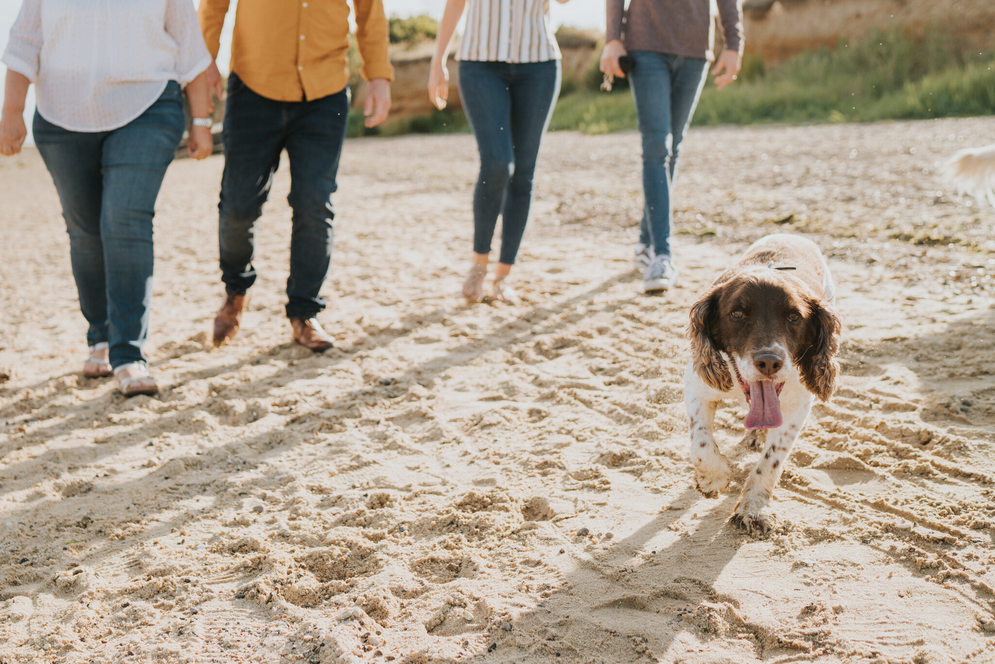 celebratory-beach-family-session-thomson-family-cudmore-grove-east-mersea-grace-elizabeth-colchester-essex-devon-suffolk-and-norfolk-alternative-wedding-and-family-photographer (50 of 53).jpg