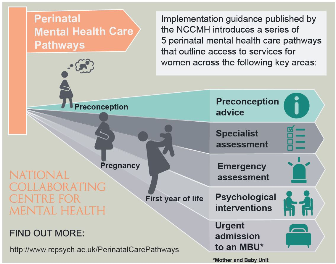 Perinatal Mental Health Care Pathways published May 2018   https://www.rcpsych.ac.uk/workinpsychiatry/nccmh/mentalhealthcarepathways.aspx
