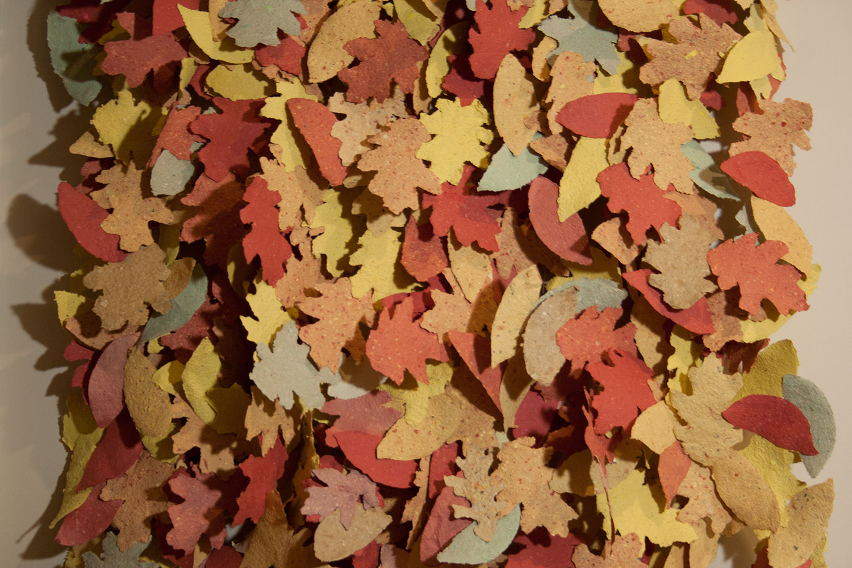 LeafFall_02.jpg