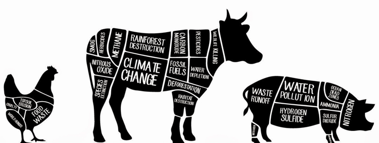 3_vegetarian-save-the-planet_51023a02d9559f63a007eec7f03da1d6.jpg