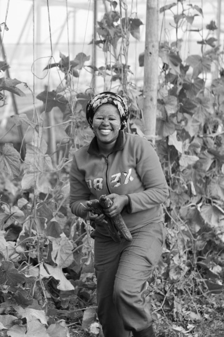 TANDI  is the first of many ladies who made the cut with her no-nonsense approach and hard working nature. She heads up the picking, packing and seed sowing.