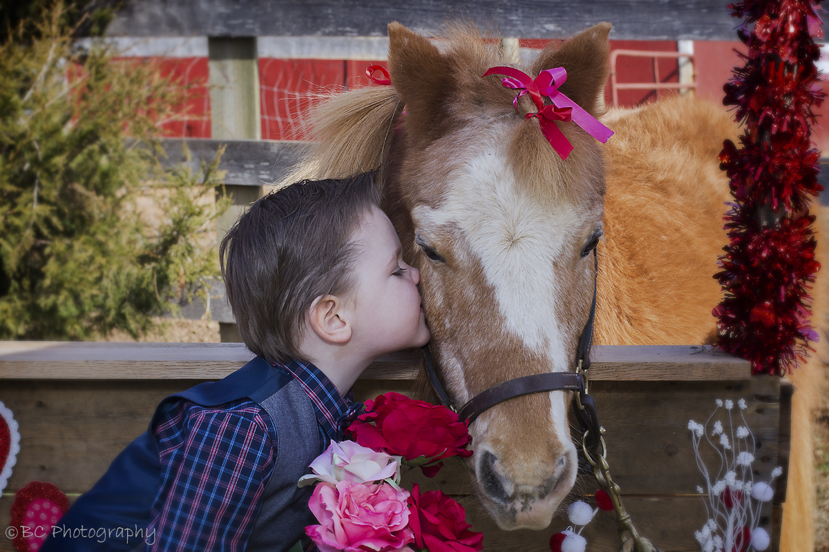 Kissing Booth - Successful Mini Sessions on the Farm