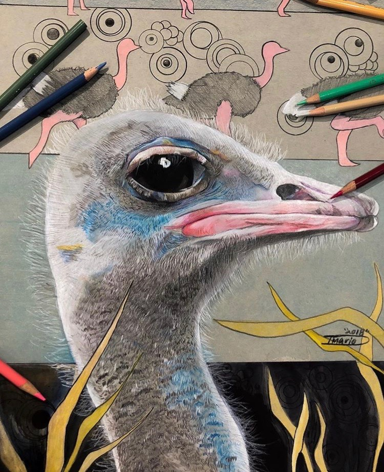 Artist Feature - Marioso