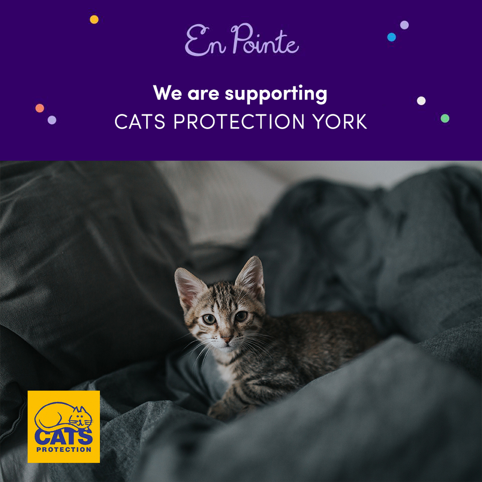 En Pointe Help - Cats Protection, York