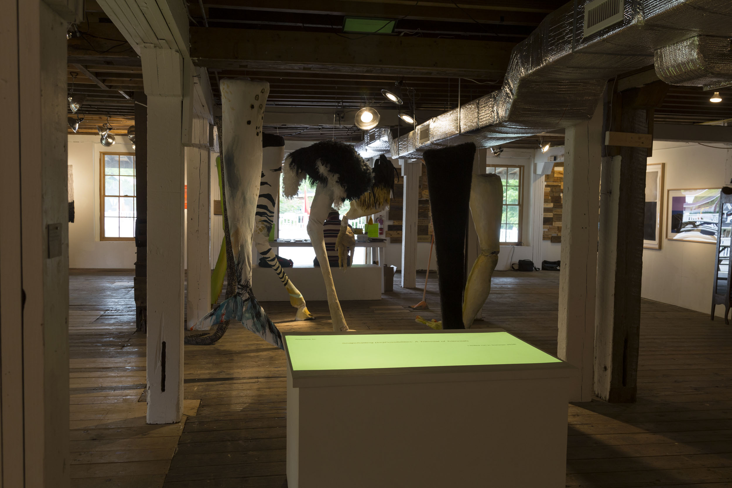 wassaic-project-exhibition-change-of-state-2018-06-10-13-28-14.jpg
