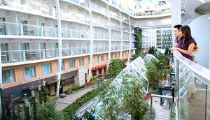 This ship accommodates the standard interior, ocean view, and balcony staterooms (either outdoor views or Indoor views).