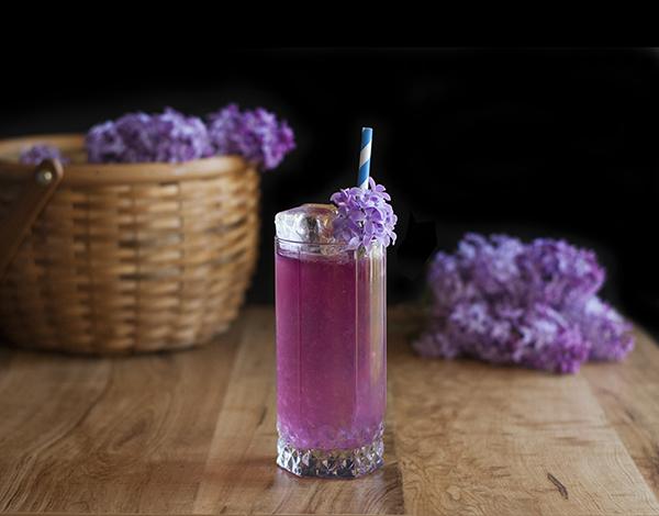 Foraged Cocktails: Making Lilac Liqueur and Lilac Lemonade