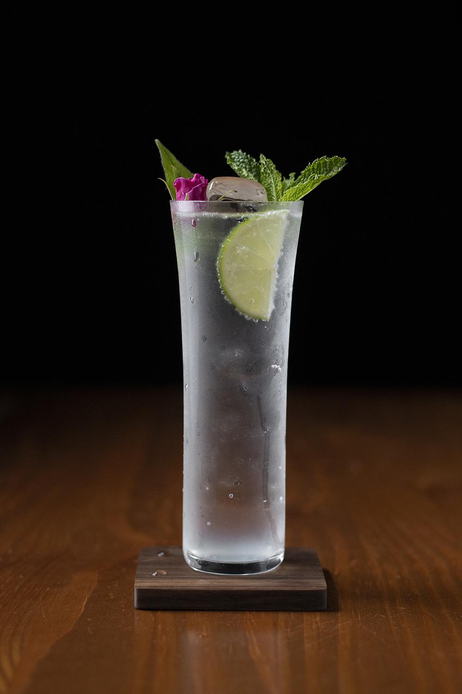 botanical gin and tonic