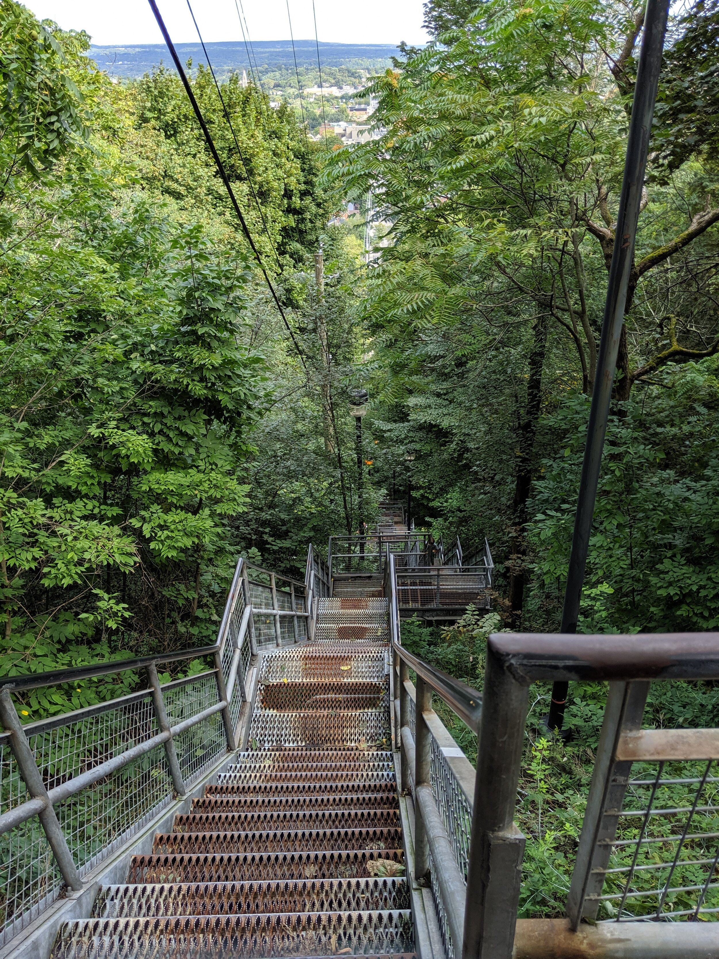 ForestStairs