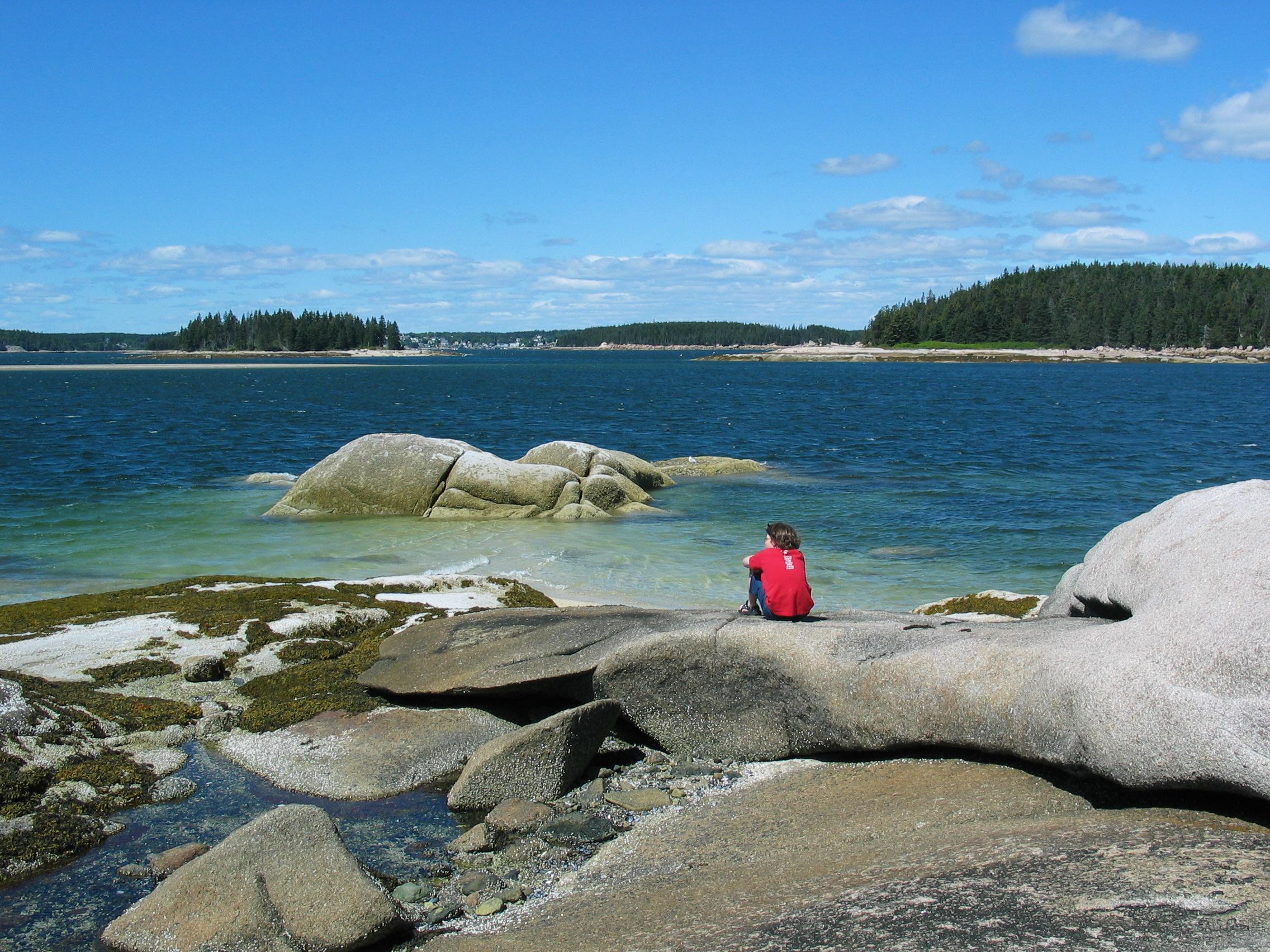 Viewing shoreline.JPG