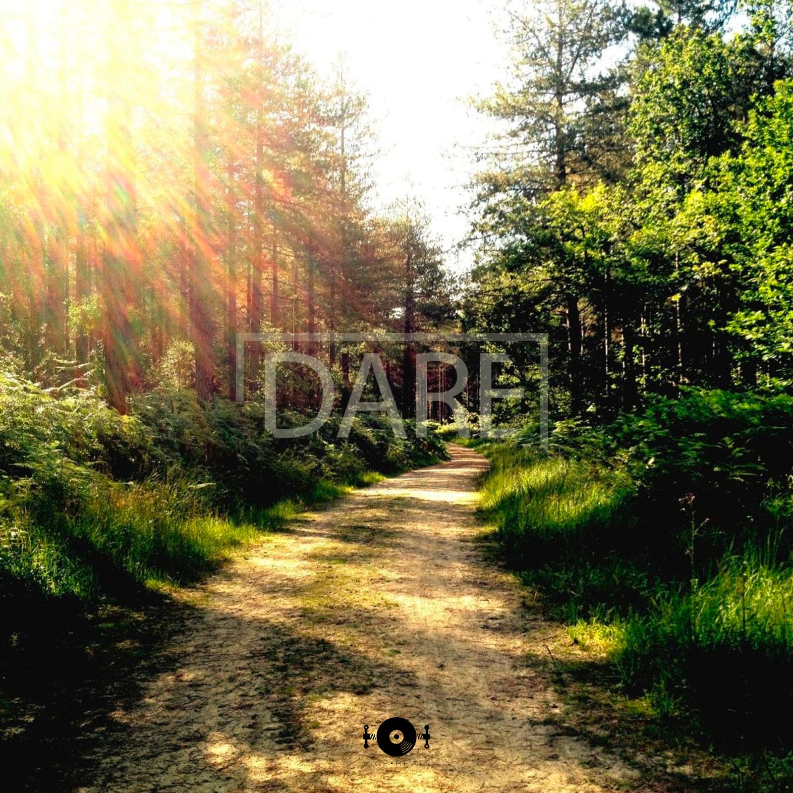 Vice beats - Dare