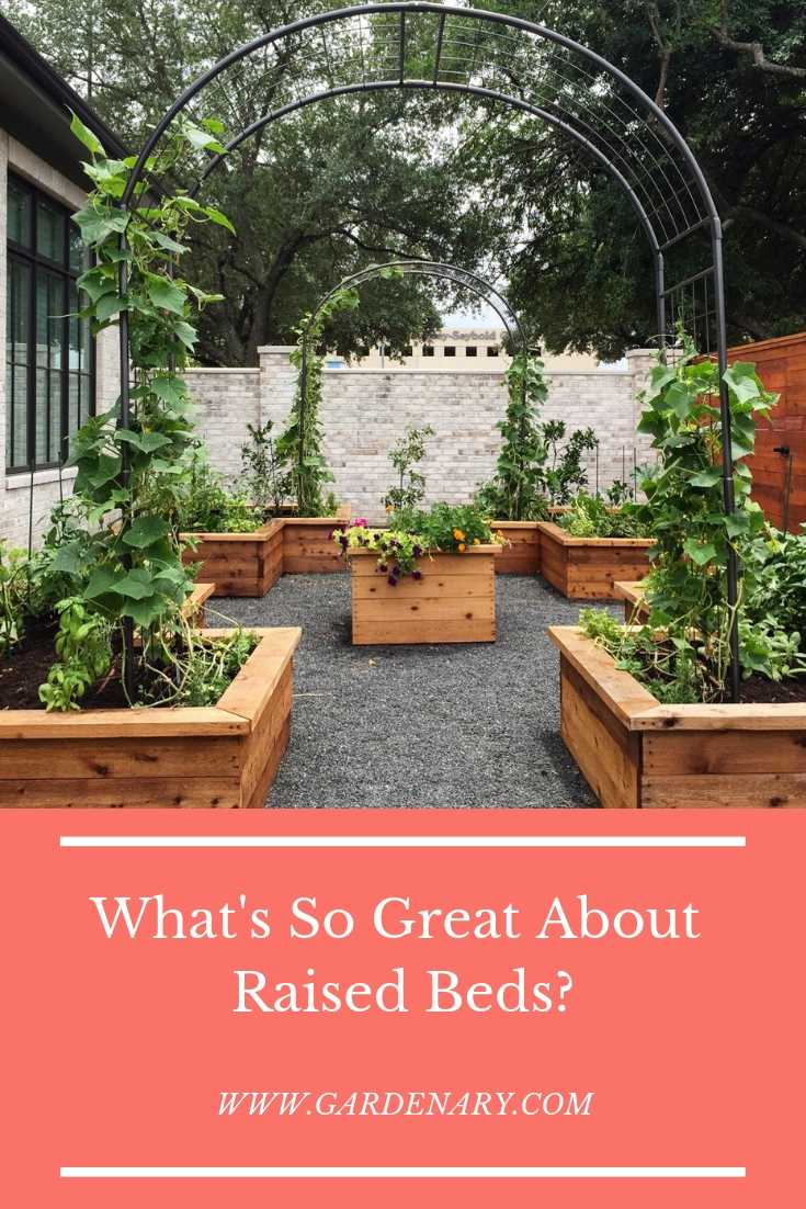 what's so great about raised beds.jpg
