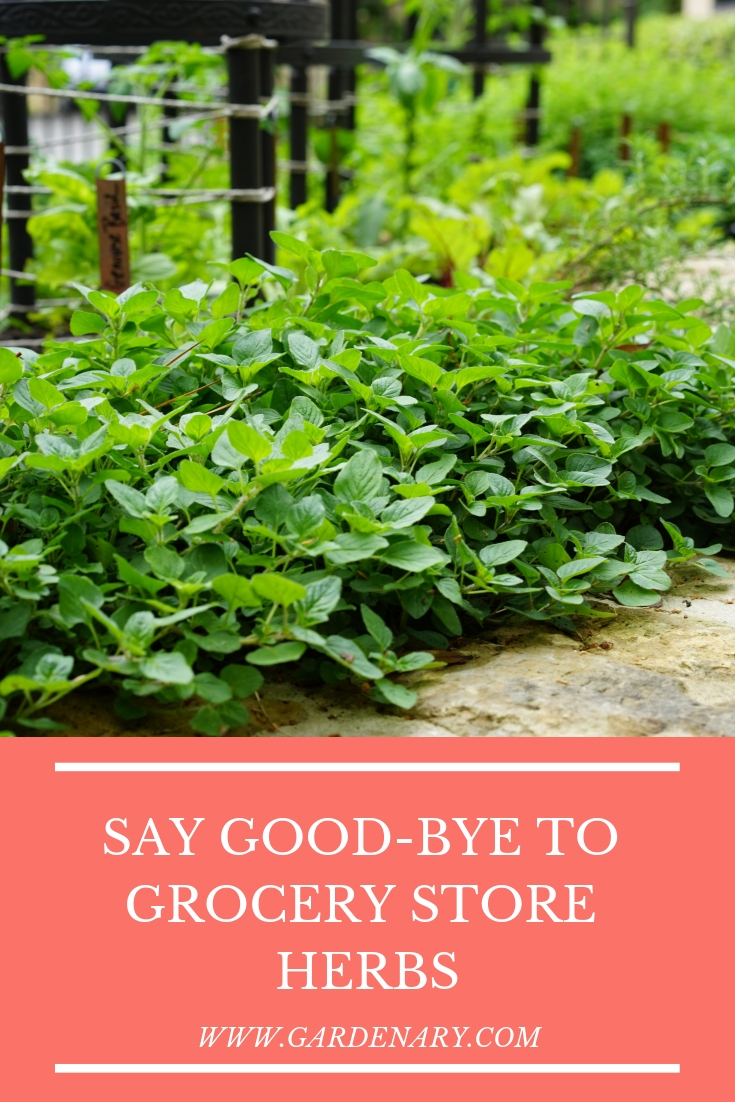 Say Good-Bye to Grocery Store Herbs.jpg