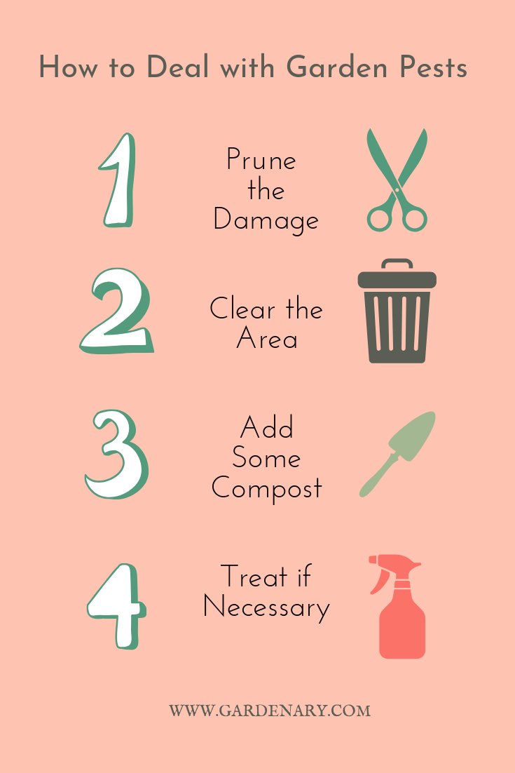 Garden Pest Treatment (1).png