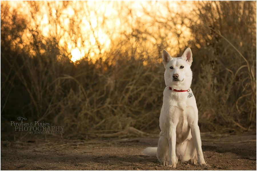 Pirates-Pixies-Photography-Tucson-photographer_0013.jpg