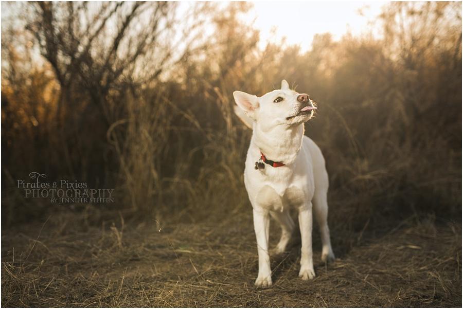 Pirates-Pixies-Photography-Tucson-photographer_0017.jpg