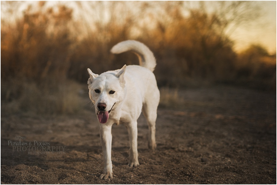 Pirates-Pixies-Photography-Tucson-photographer_0019.jpg