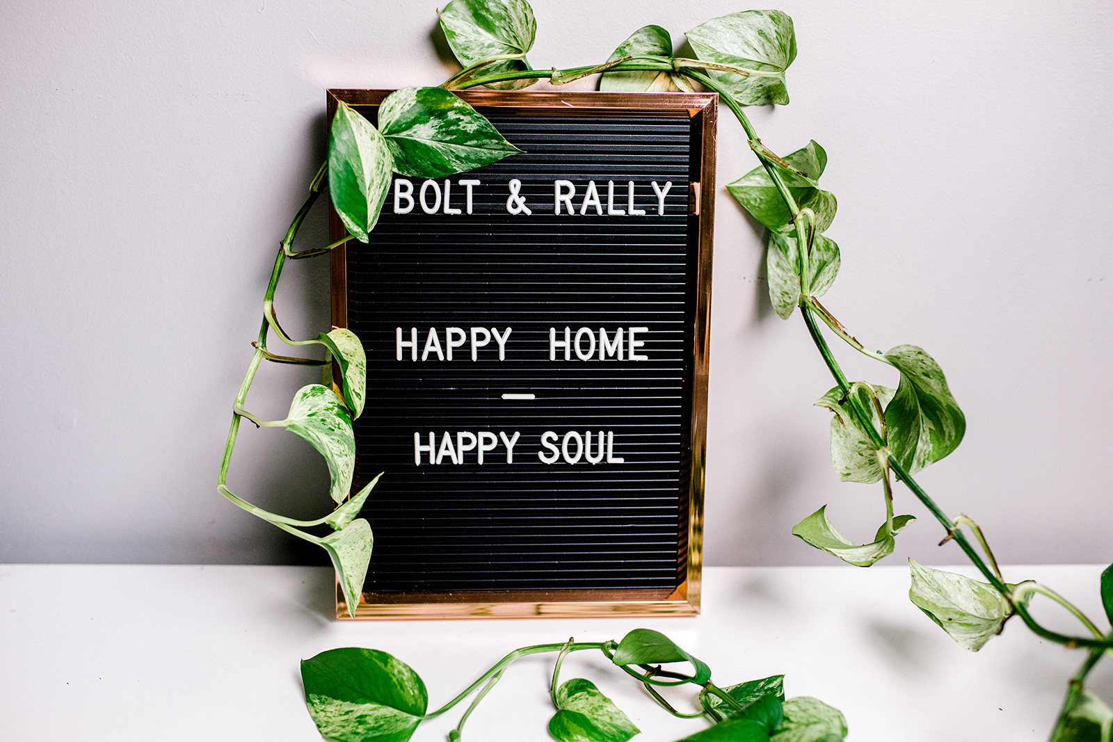 OUR ROOTS - bolt /bōlt/ verb: to move quicklyrally /ˈralē/ verb: to recover in health, spirits, or poise.We believe that since plants make people happy, planters can make people happy, too. Long gone are the days where planters are merely just a decoration; our pots have been created to boost your mood with a cute, sweet or inspiring quote.Every one of our terracotta planters are hand painted and hand stamped from our home workshop in Toronto, Canada.Today, over 2,000 of our planters live in happy homes.Thank you for helping us grow!