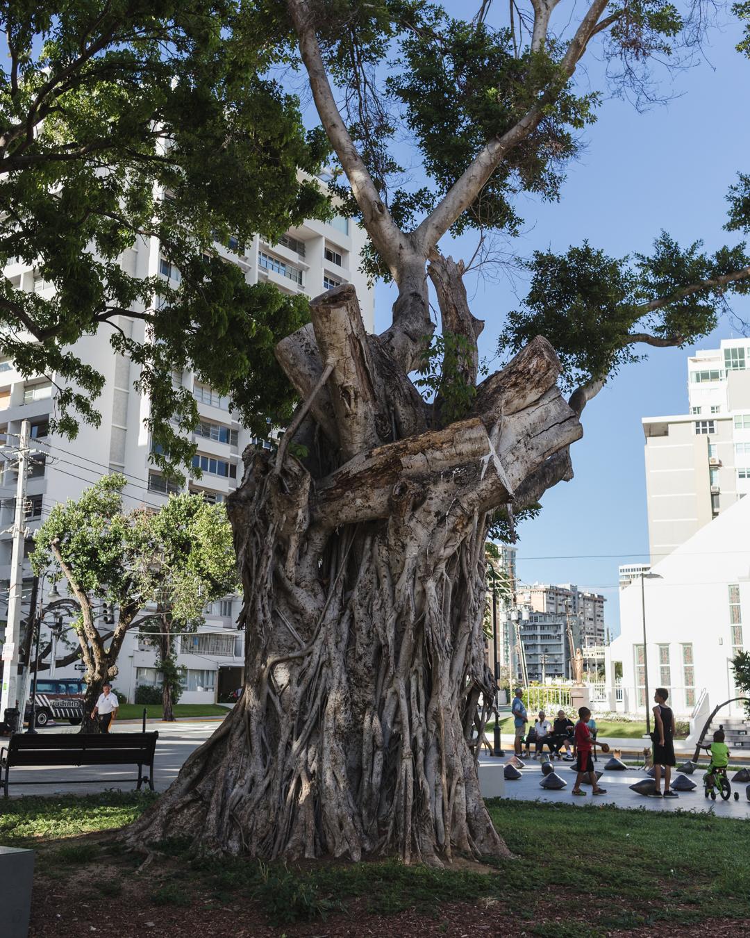 Santurce blog-3.jpg