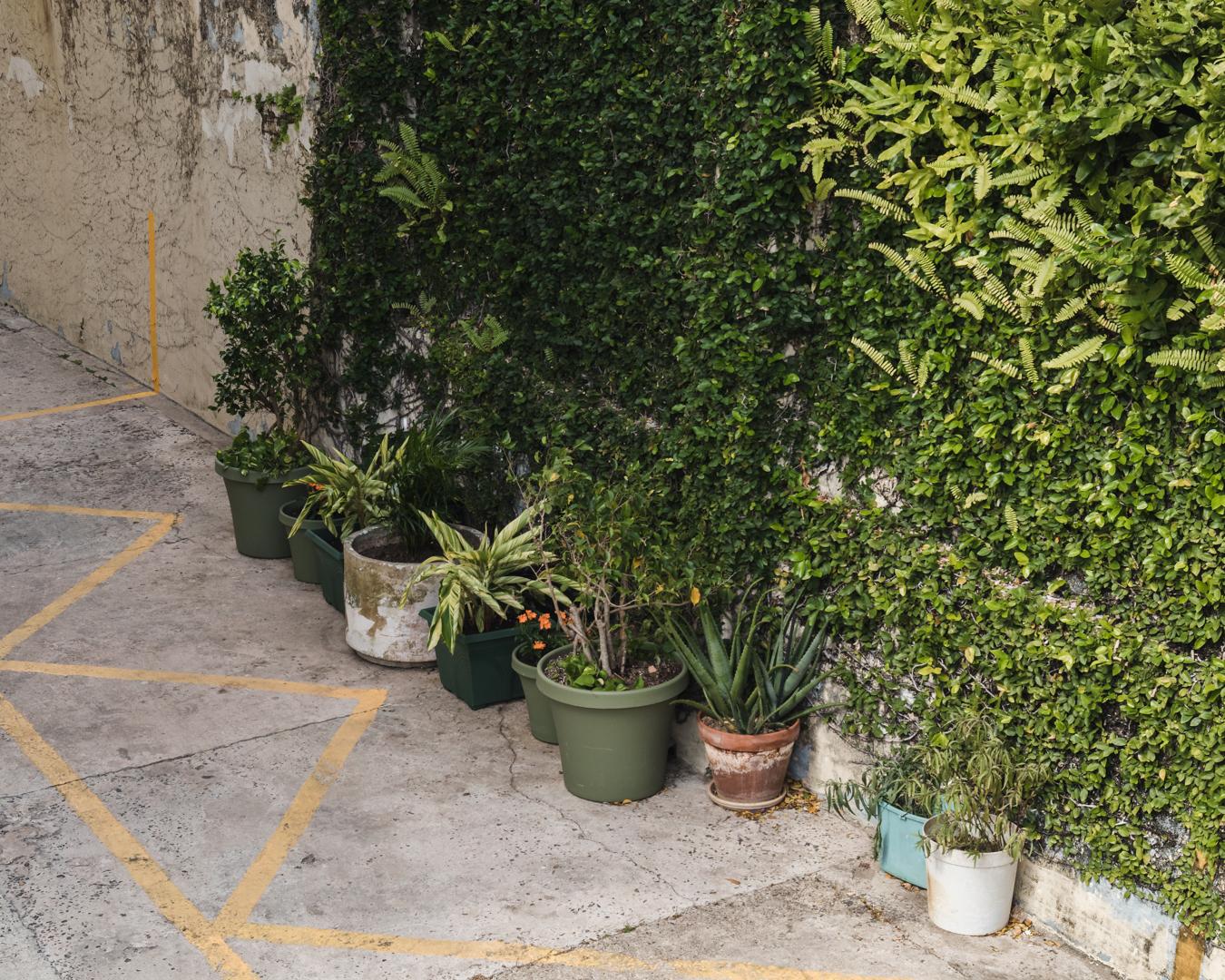 Santurce blog-25.jpg