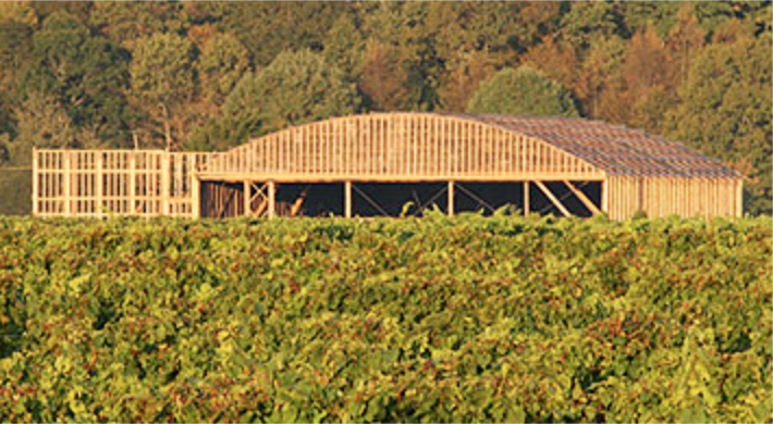 saltwater farm vineyard construction