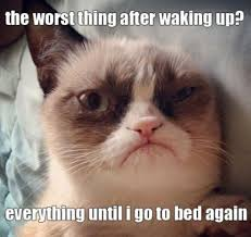 I'm pretty sure this is the face we all have on Monday morning. -