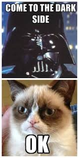 Combining our love of Star Wars and Grumpy Cat? #winning -