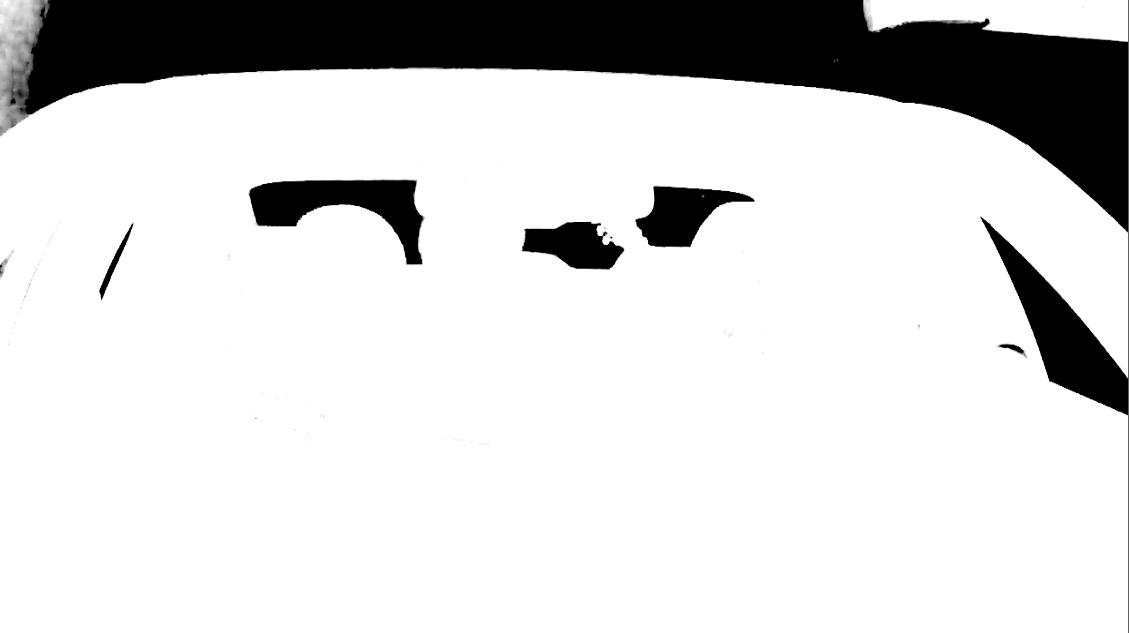initial primatte