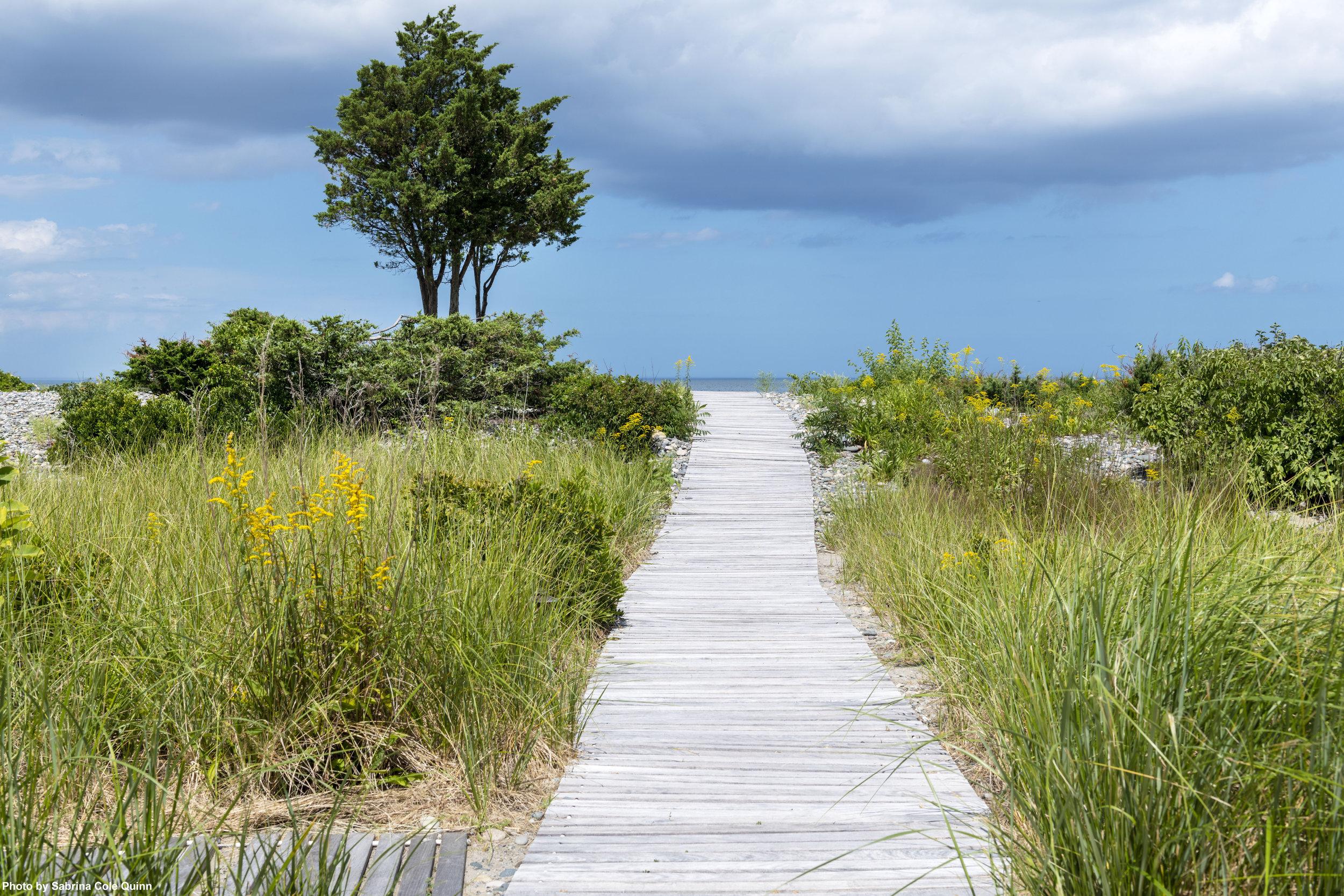 Sandy Cove Gambrel 8_Quinn.jpg