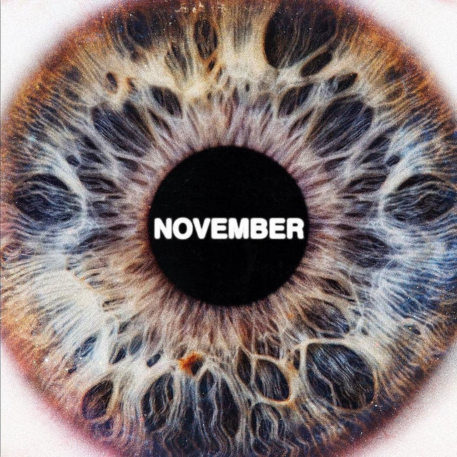 november-sir.jpg