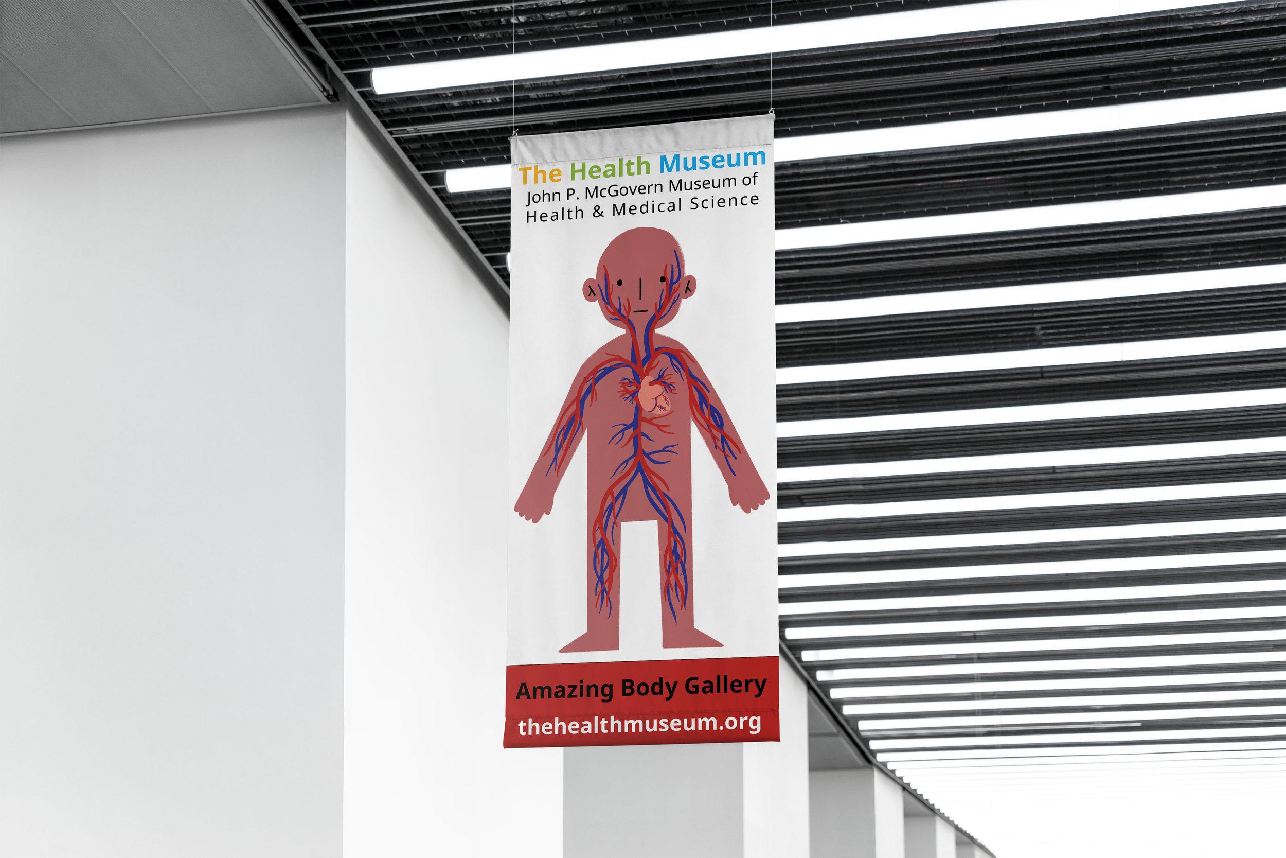 mockup_circulatory system flag.jpg