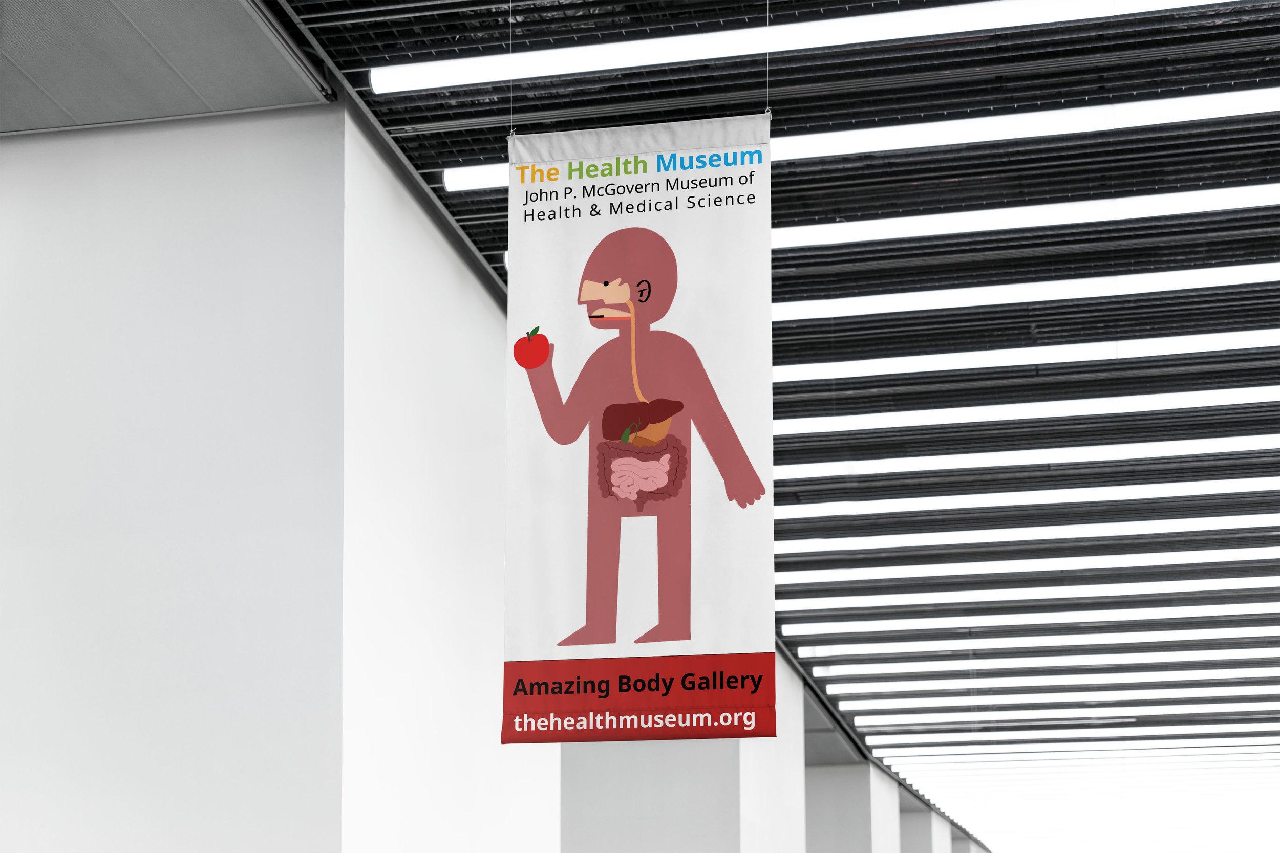 mockup_digestive system flag.jpg