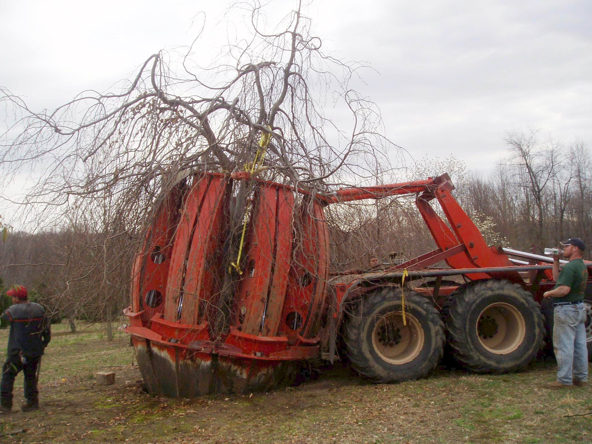 beech-move-equipment.JPG