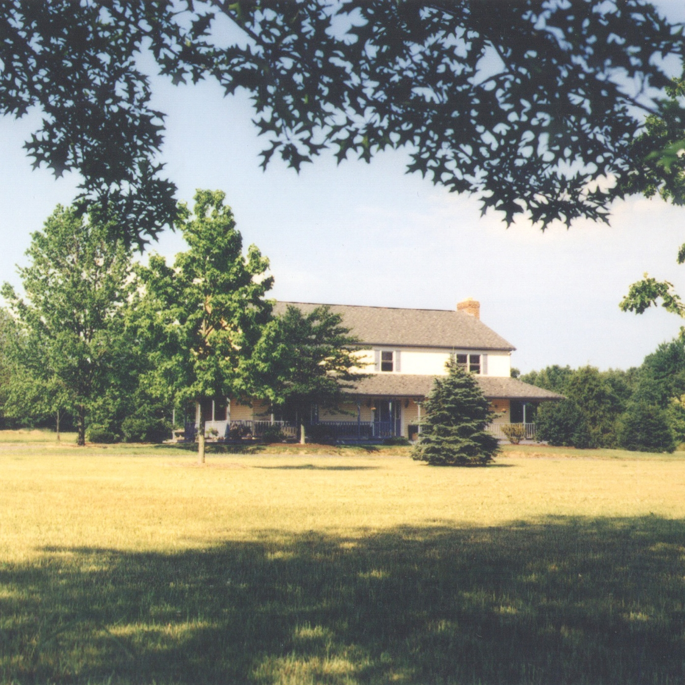 amtree-house-1-after-b.jpg