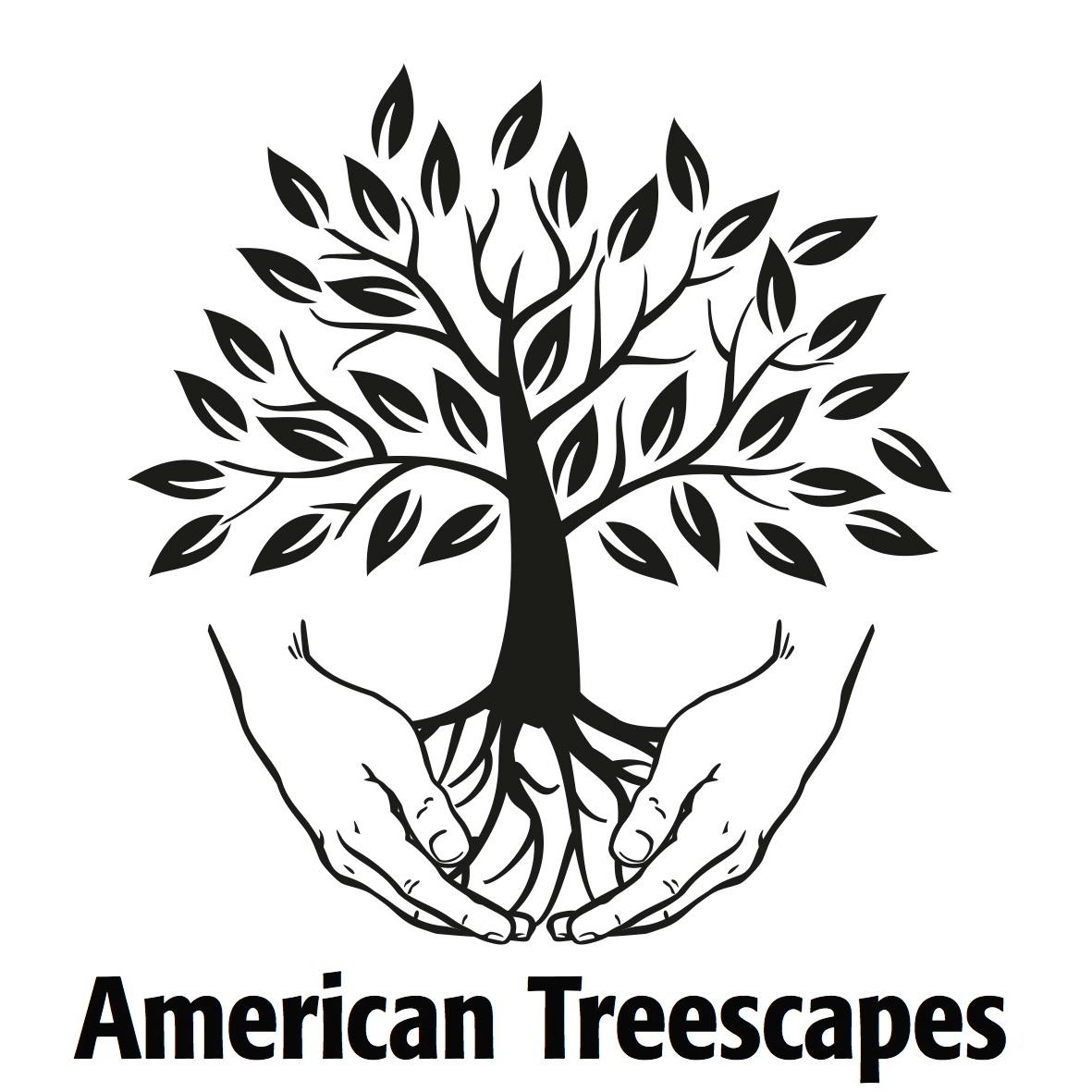 ATS+-+Logo+Crop.jpg