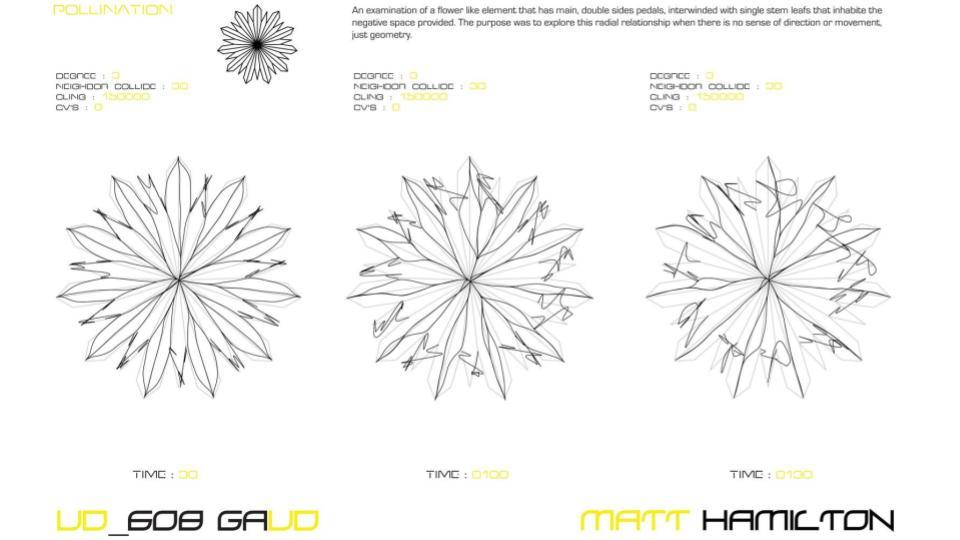 GC_Hair-12.jpg