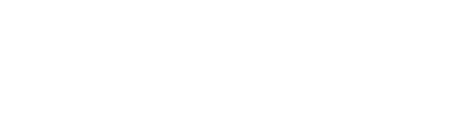 Emmie - Website - Banner - Logo-02.png