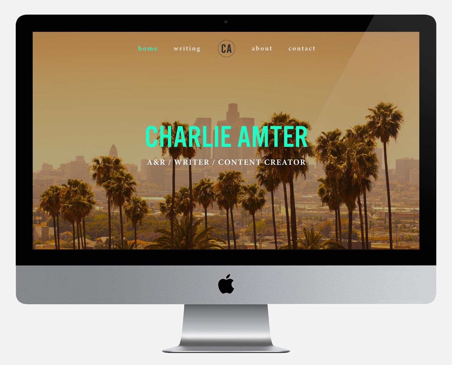 Computer Website Amter cropped.jpg