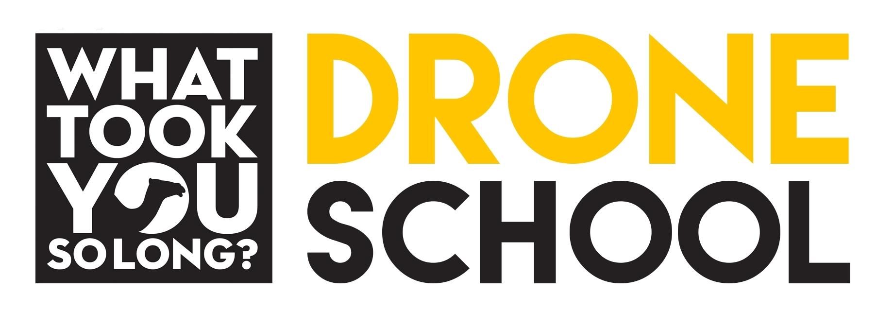 WTYSL_drone_logo.jpg