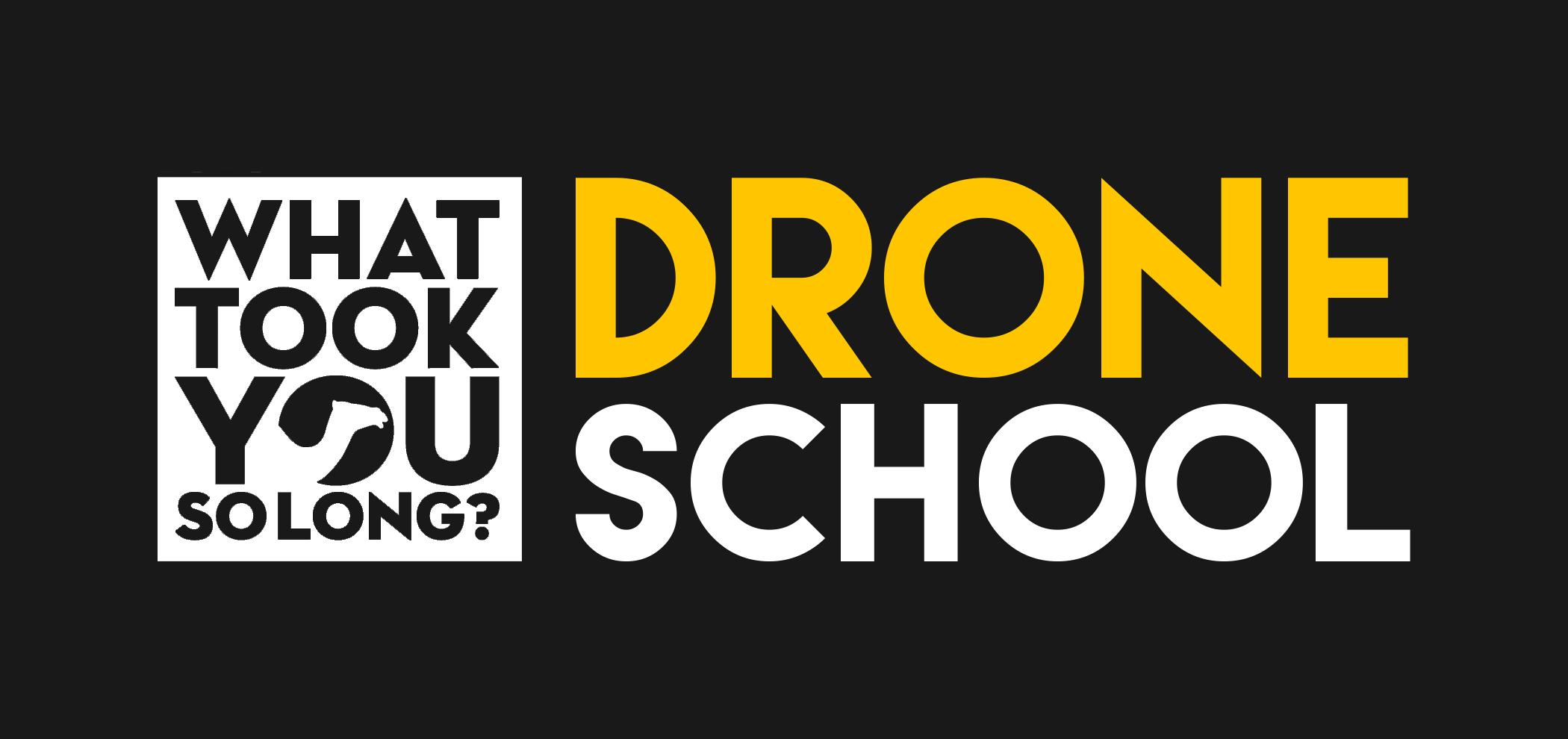 WTYSL_drone_logo2.jpg