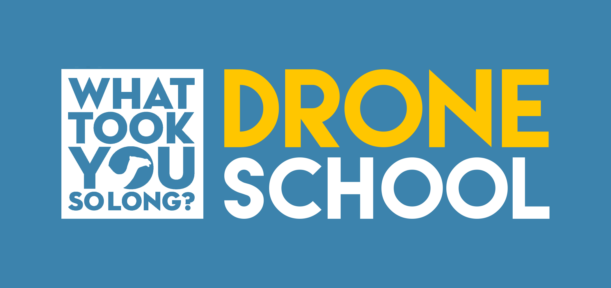 WTYSL_drone_logo4.jpg