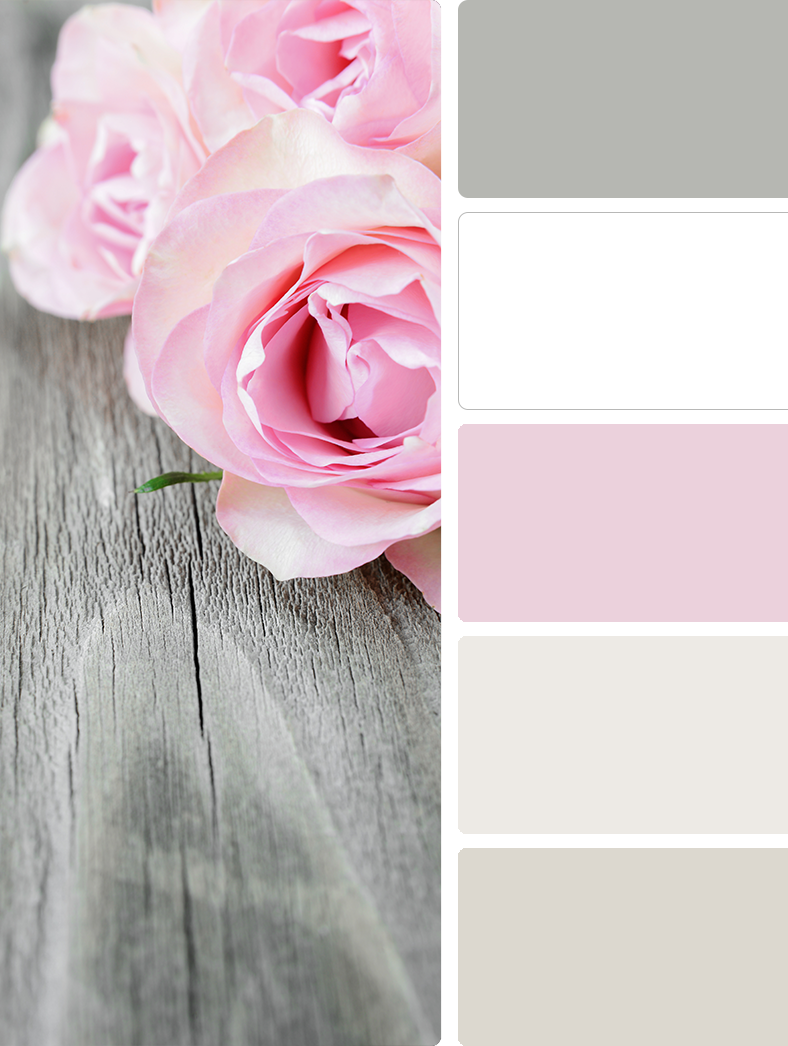 Sherwin Williams – Gray Clouds (SW 7658), Sherwin Williams – High Reflective White (SW 7757), Sherwin Williams – Teaberry (SW 6561), Sherwin Williams – Snowbound (SW 7004), Sherwin Williams – Drift of Mist (SW 9166)