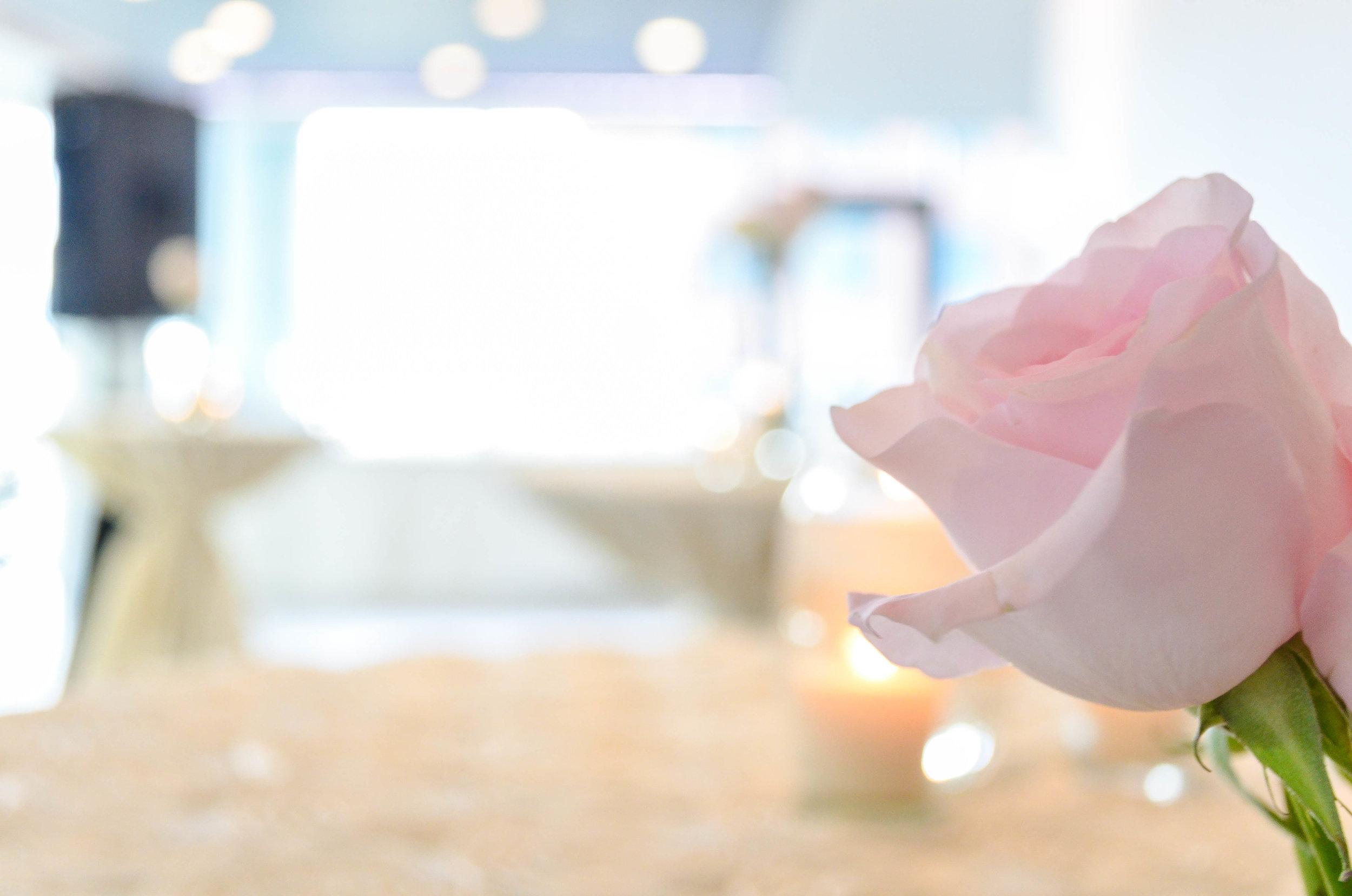 Vintage Romance Cocktail Style Wedding-40.jpg