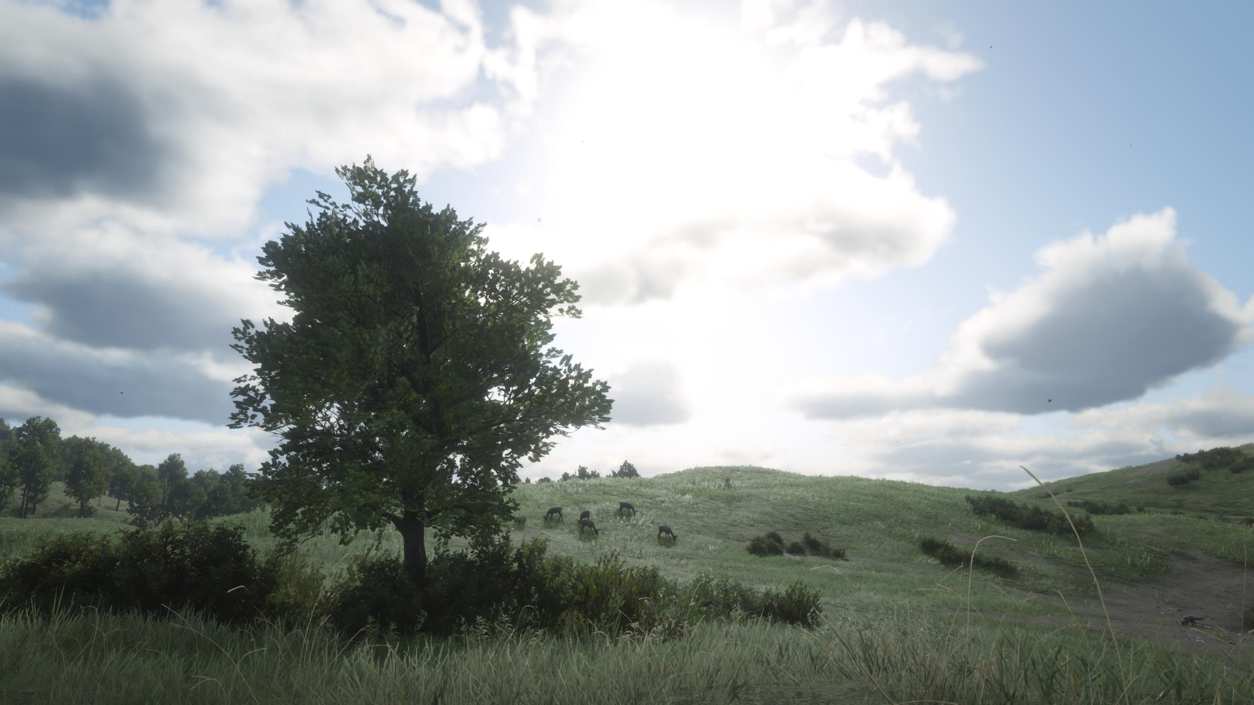 Read Dead Redemption 2_XBOX_0003_JTC.png