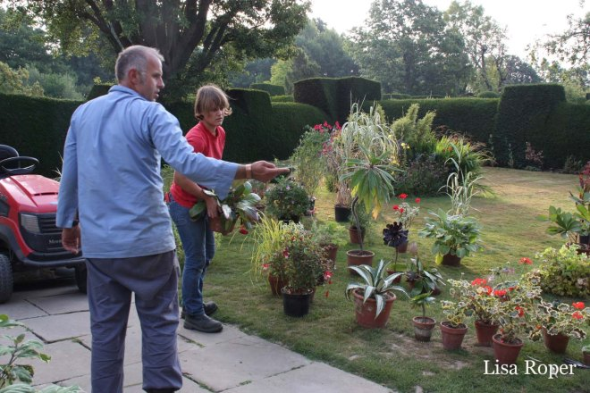 Under Fergus's direction, Emma begins to organize and design the front container display at Great Dixter.