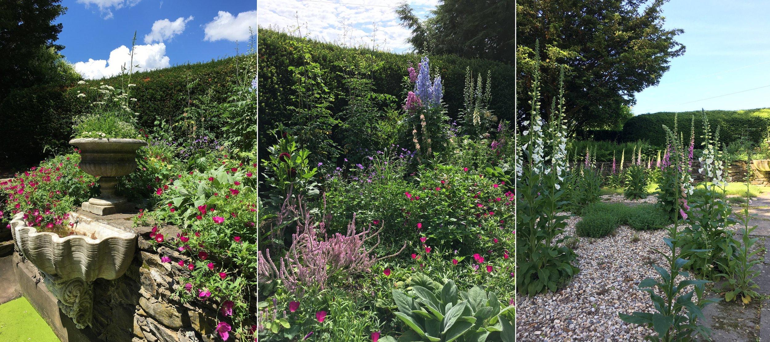 Client_Garden_Collage