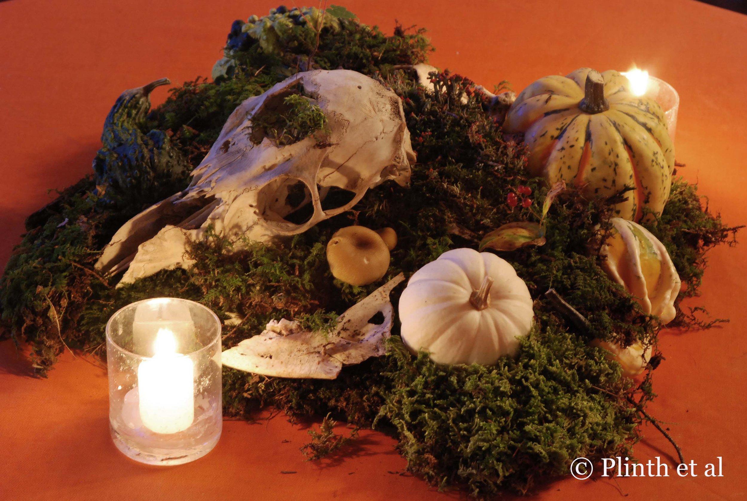 skull_tableau_lit_at_night.jpg