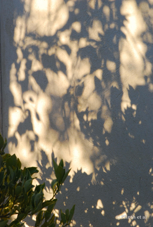 light_on_wall.jpg