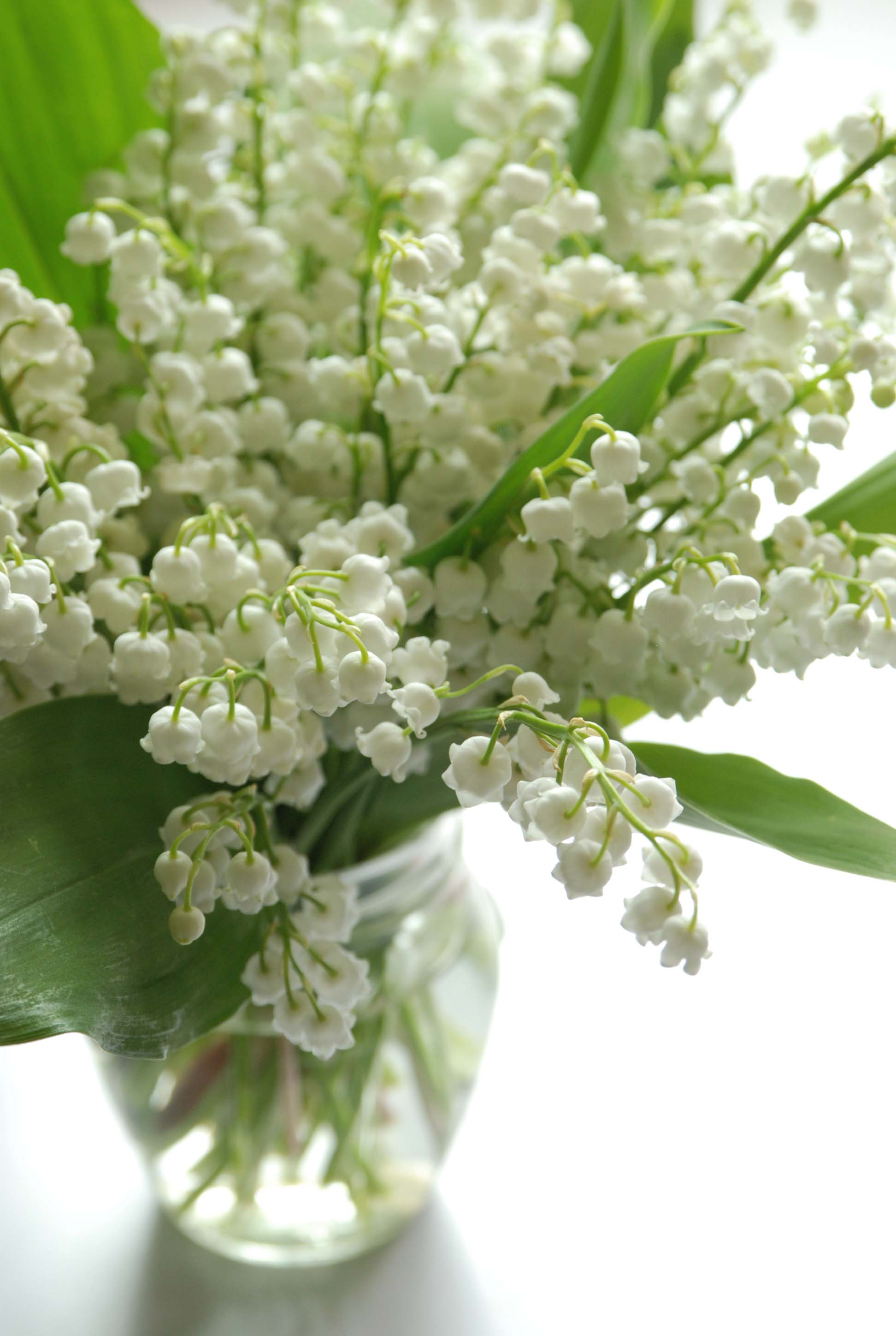 lily_of_the_valley_bouquet.jpg